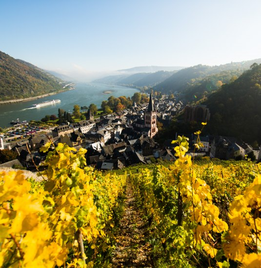 View of Bacharach   © Henry Tornow